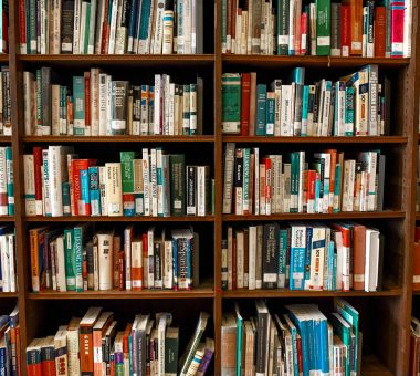 The Future of School Libraries